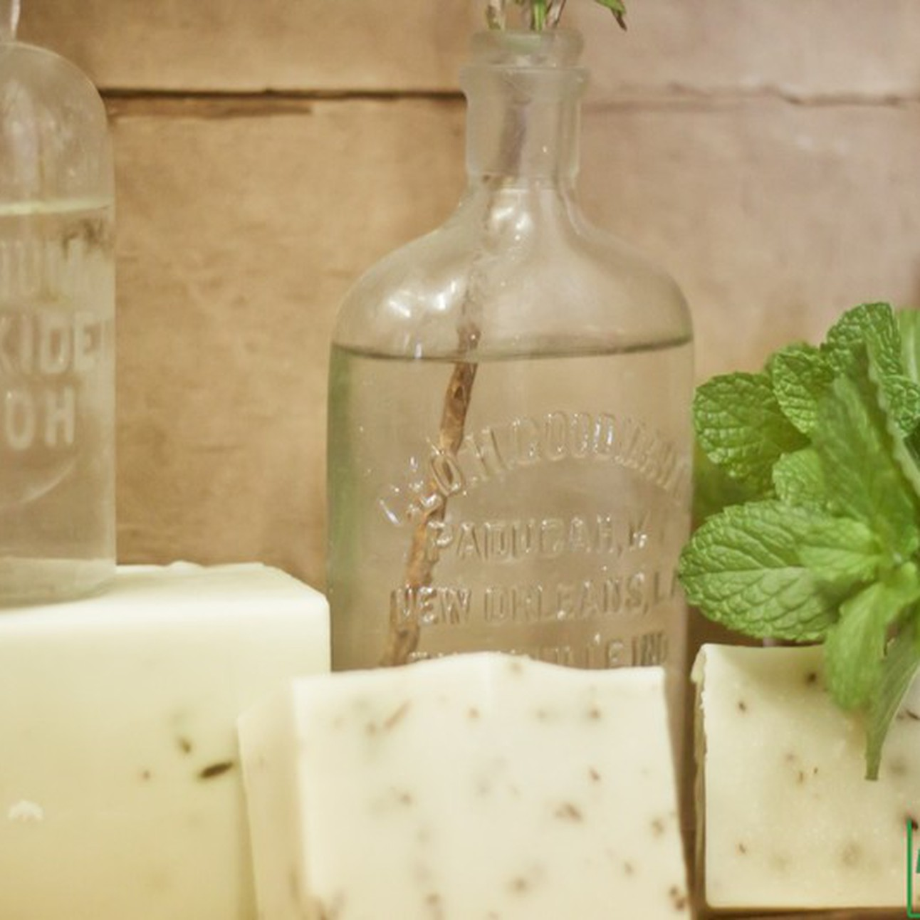 Left Hand Soap Company - CO STARTERS®
